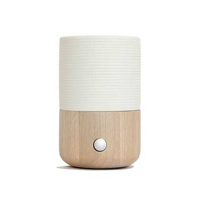 best diffuser for large room